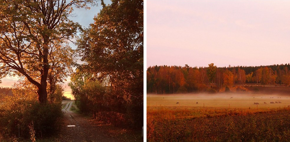 24 Reasons Why Living In Sweden Will Ruin You For Life