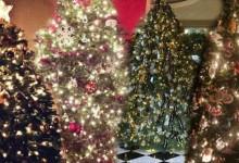 Πως στόλισαν οι star! Δείτε όλα τα χριστουγεννιάτικα δέντρα των επωνύμων