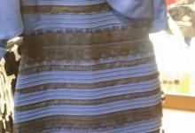 Ο Lynx δίνει την απάντηση: Τελικά τι χρώμα είναι το φόρεμα;