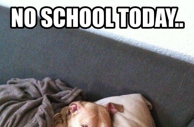 no-school-today