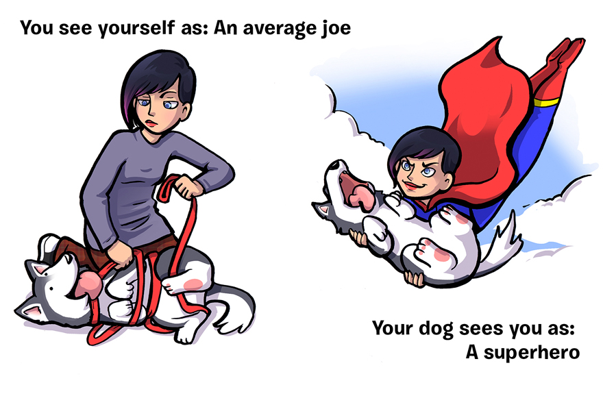 how-you-see-yourself-vs-how-your-dog-sees-you-15__880