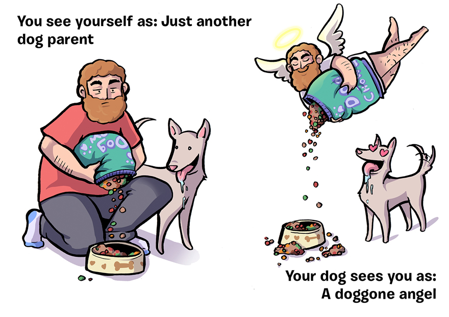 how-you-see-yourself-vs-how-your-dog-sees-you-21__880