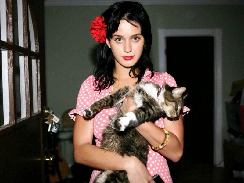 Η Katy Perry θρηνεί την αγαπημένη της γάτα και μασκότ, Kitty Purry!